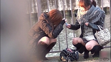 Japanese Beauties Expose Themselves - Scene 5